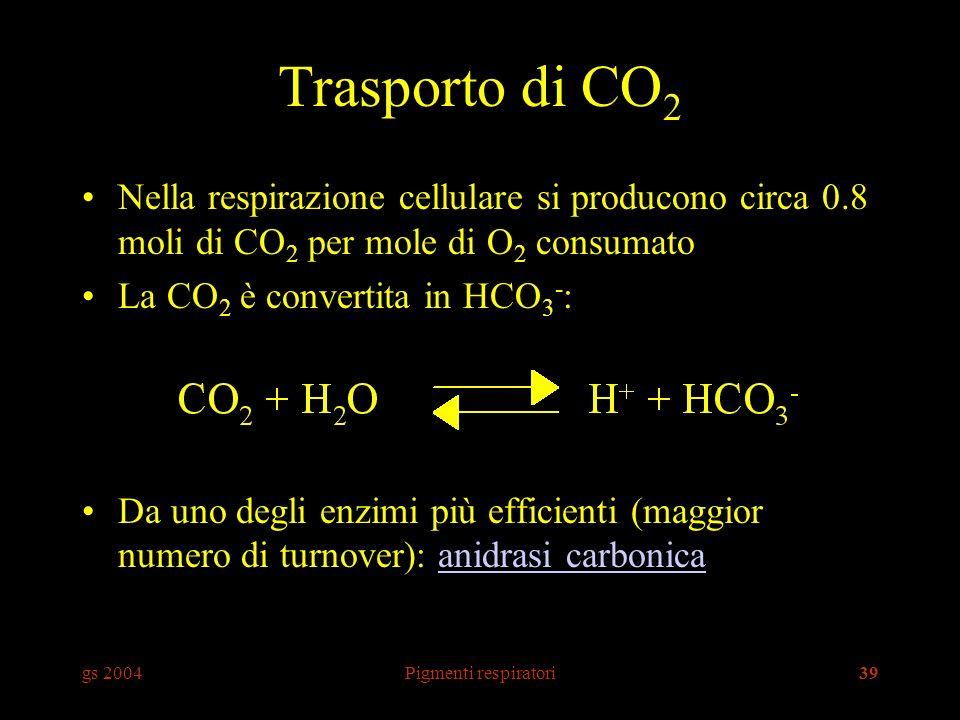 Trasporto di CO2 Nella respirazione cellulare si producono circa 0.8 moli di CO2 per mole di O2 consumato.