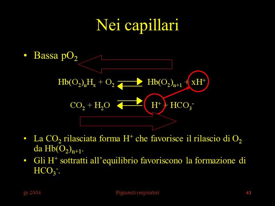 Nei capillari Bassa pO2. La CO2 rilasciata forma H+ che favorisce il rilascio di O2 da Hb(O2)n+1.