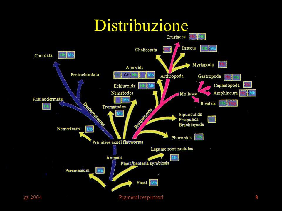 Distribuzione gs 2004 Pigmenti respiratori