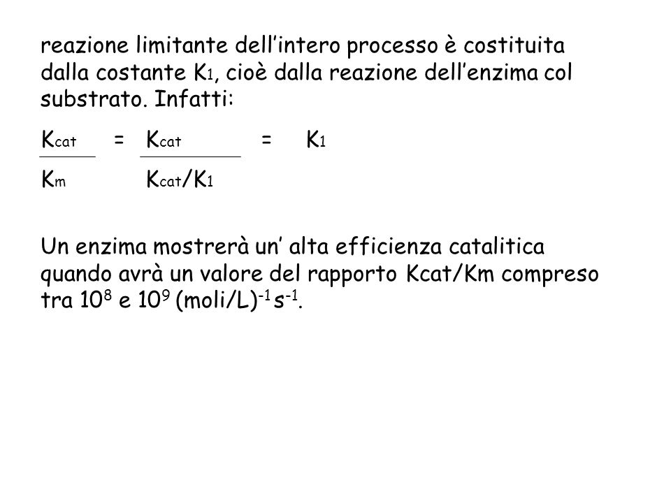 reazione limitante dell'intero processo è costituita dalla costante K1, cioè dalla reazione dell'enzima col substrato. Infatti: