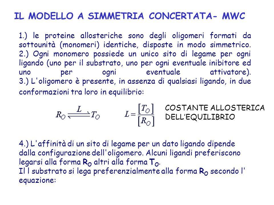 IL MODELLO A SIMMETRIA CONCERTATA- MWC