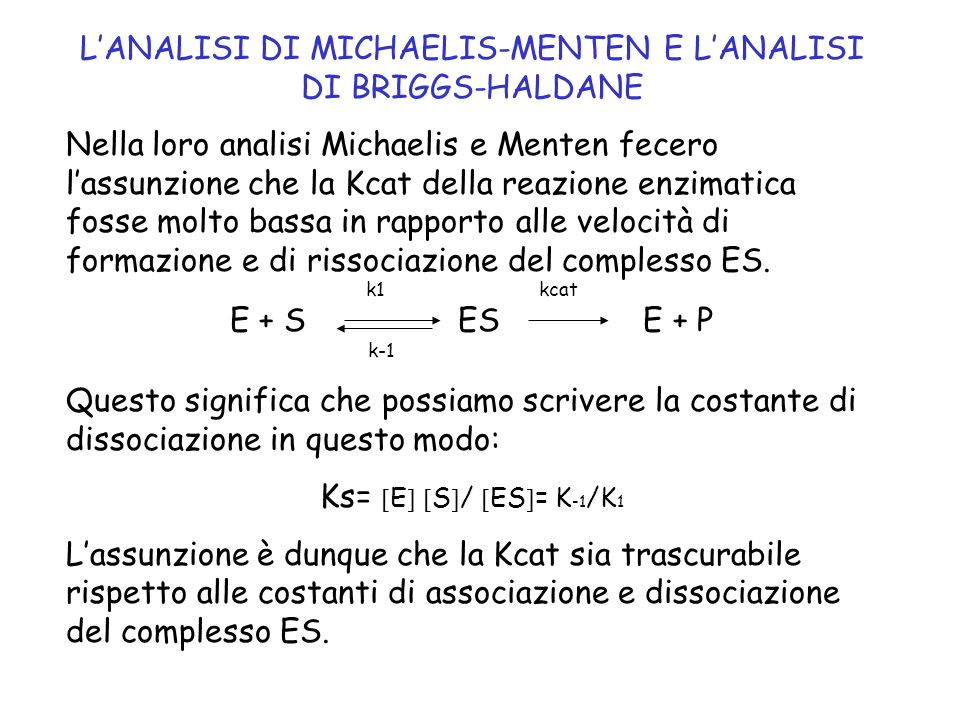 L'ANALISI DI MICHAELIS-MENTEN E L'ANALISI DI BRIGGS-HALDANE