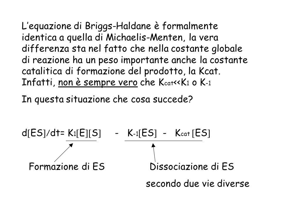 L'equazione di Briggs-Haldane è formalmente identica a quella di Michaelis-Menten, la vera differenza sta nel fatto che nella costante globale di reazione ha un peso importante anche la costante catalitica di formazione del prodotto, la Kcat. Infatti, non è sempre vero che Kcat<<K1 o K-1