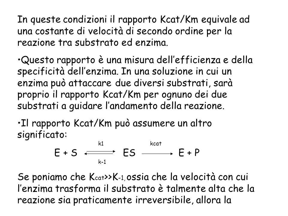 Il rapporto Kcat/Km può assumere un altro significato: