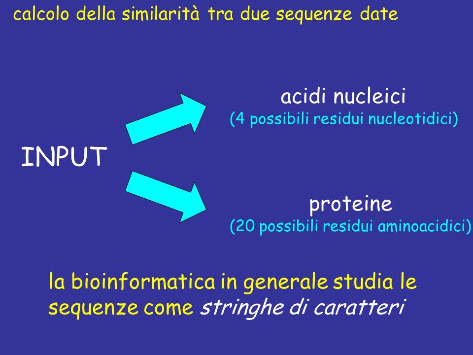INPUT acidi nucleici proteine