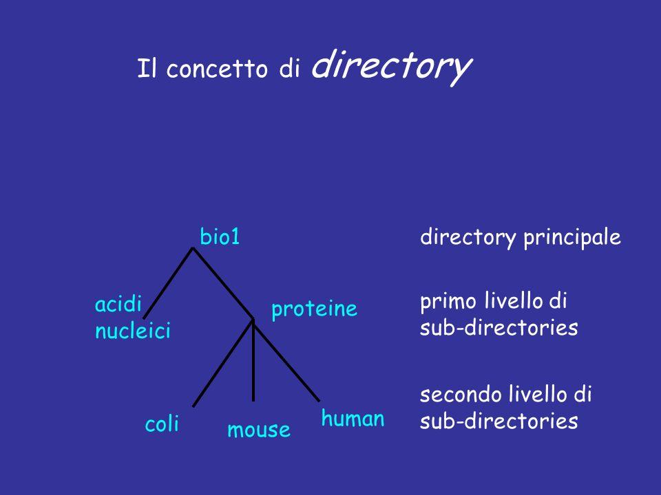 Il concetto di directory