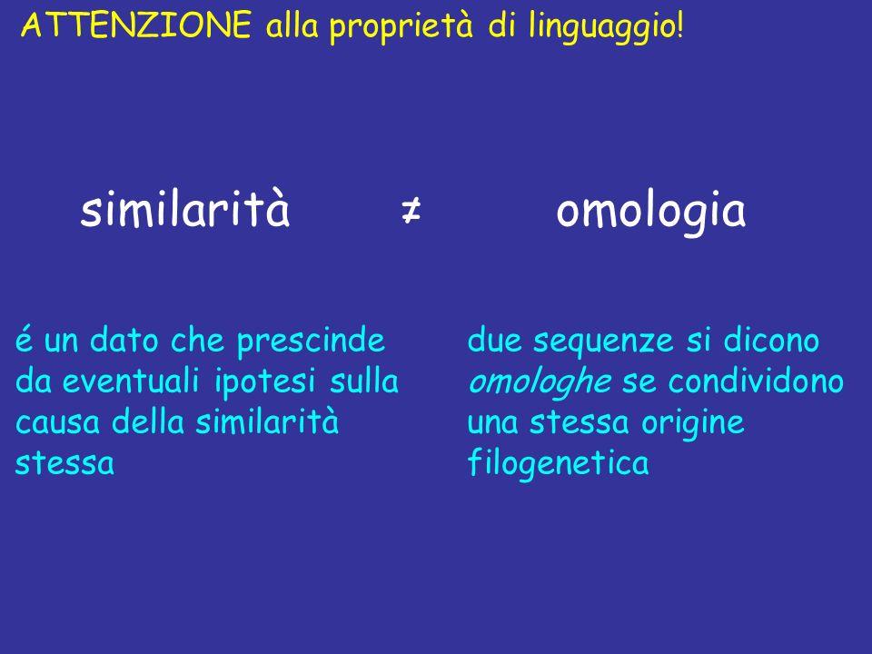 similarità omologia ≠ ATTENZIONE alla proprietà di linguaggio!