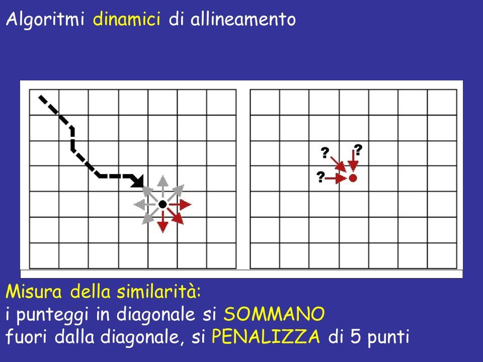 Algoritmi dinamici di allineamento