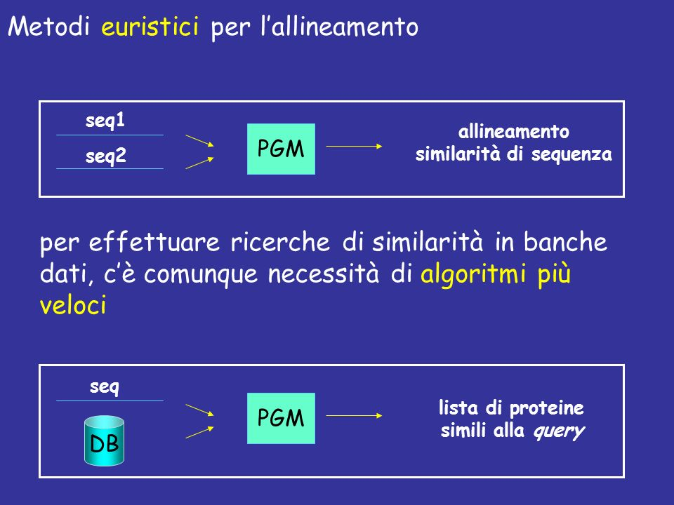 similarità di sequenza