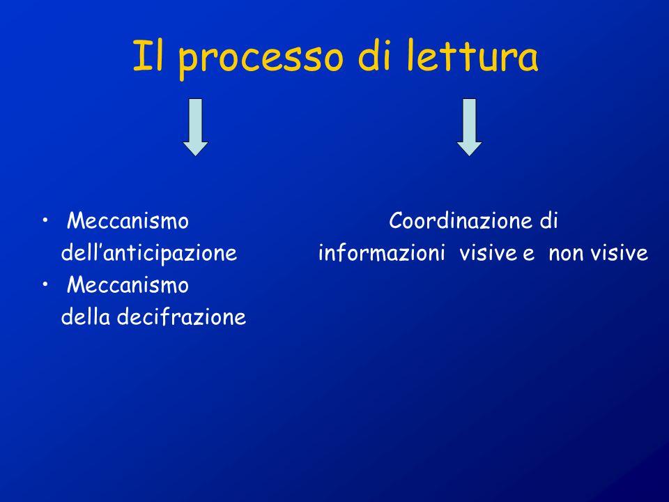Il processo di lettura Meccanismo Coordinazione di
