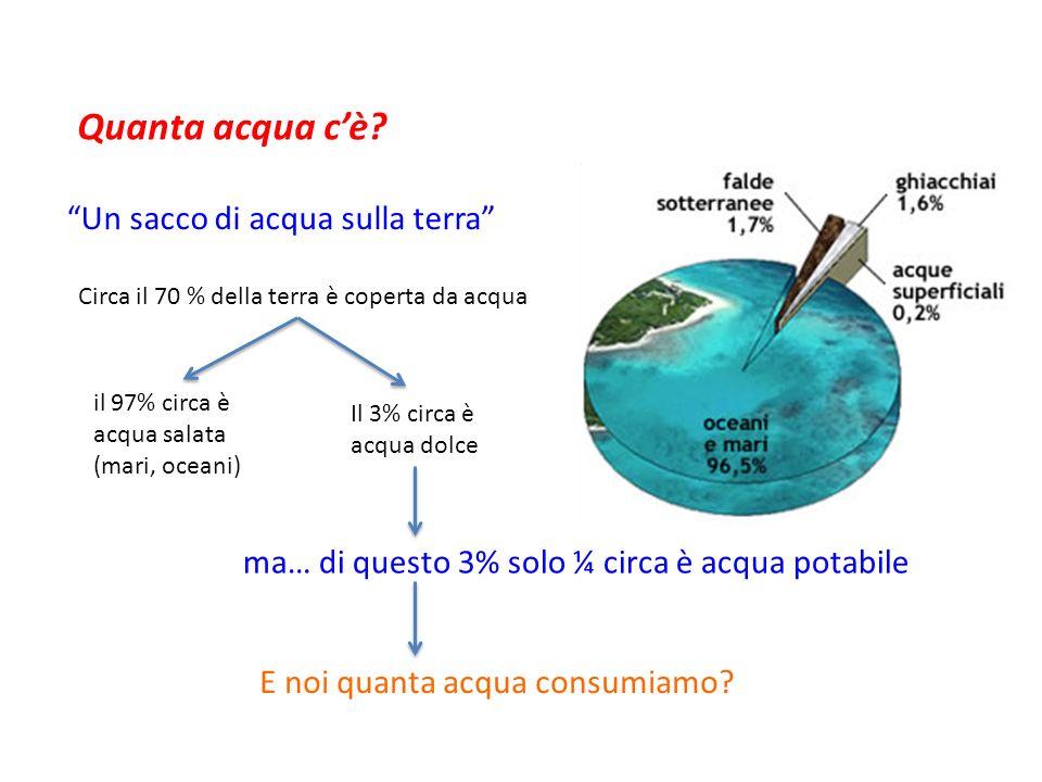 Quanta acqua c'è Un sacco di acqua sulla terra