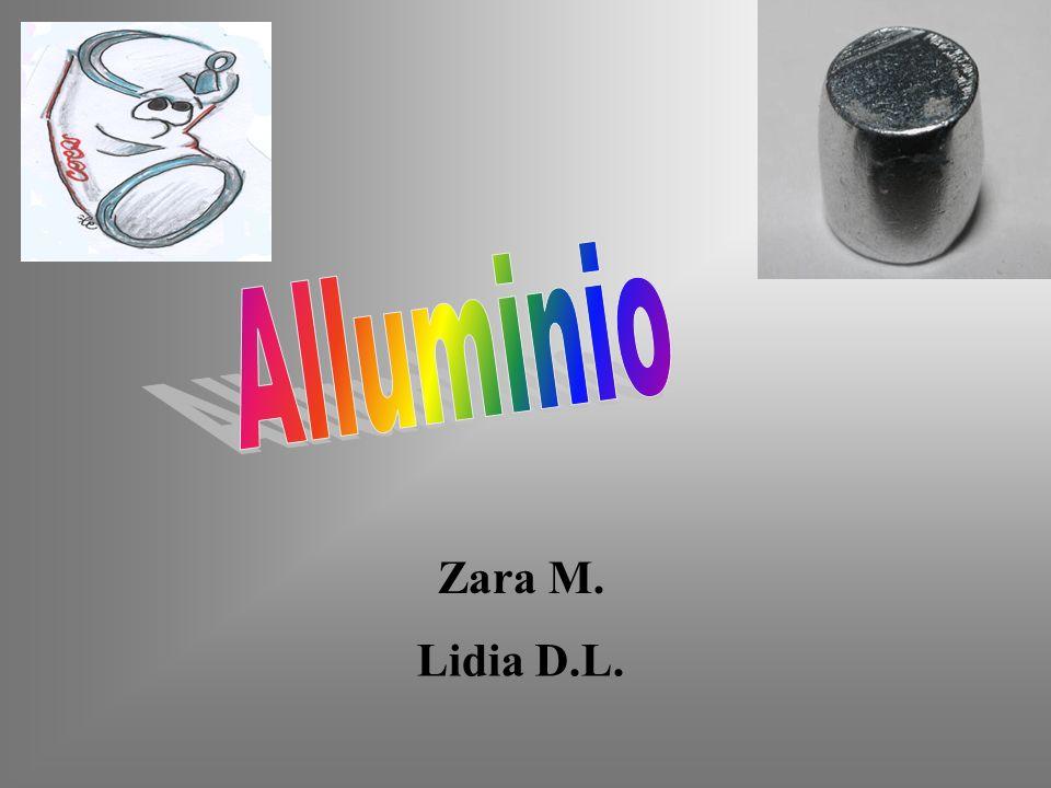 Alluminio Zara M. Lidia D.L.