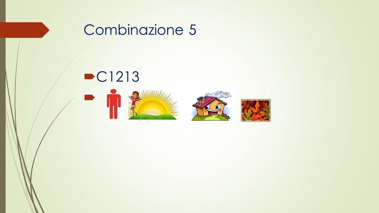 Combinazione 5 C1213