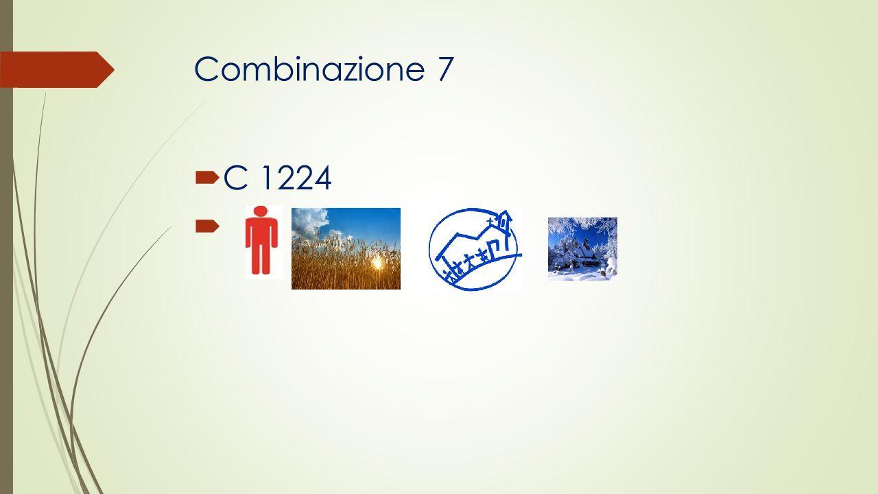 Combinazione 7 C 1224