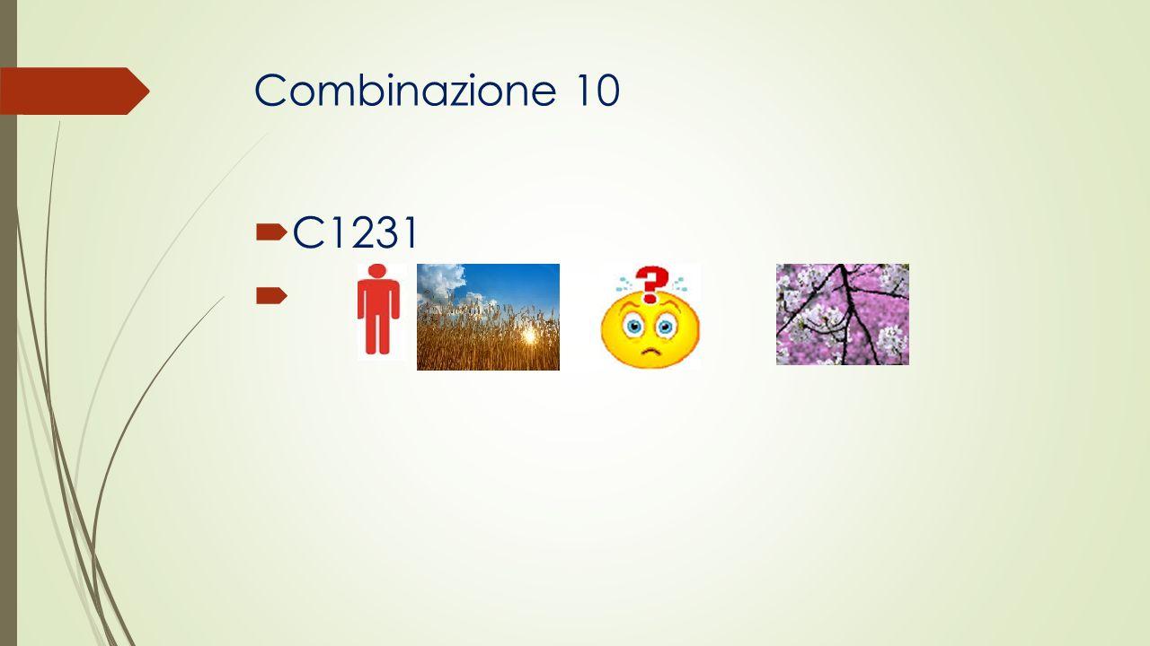 Combinazione 10 C1231