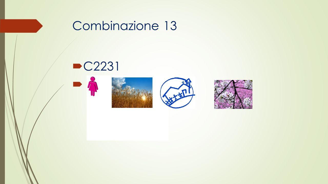 Combinazione 13 C2231