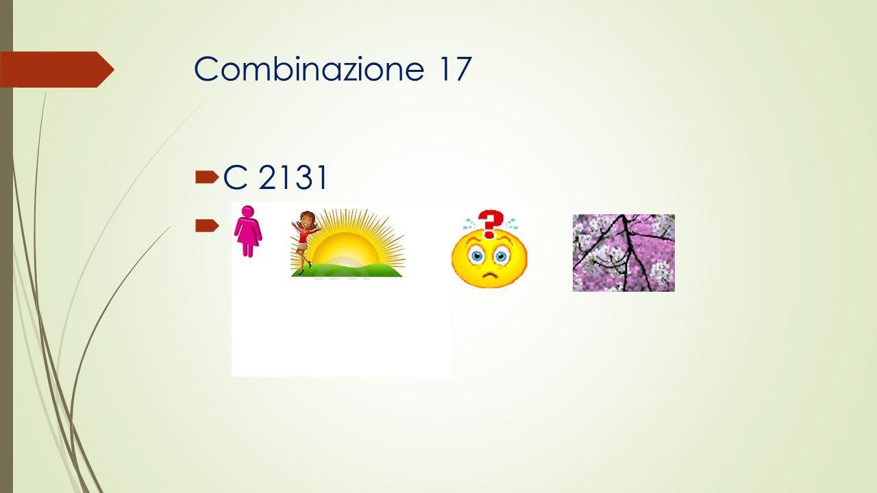 Combinazione 17 C 2131