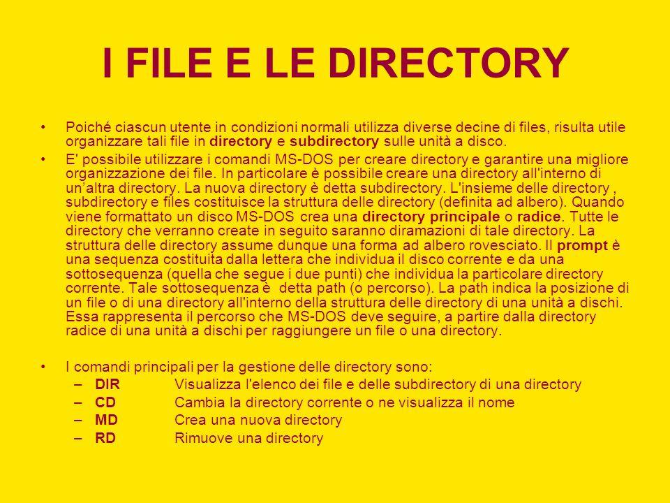 I FILE E LE DIRECTORY