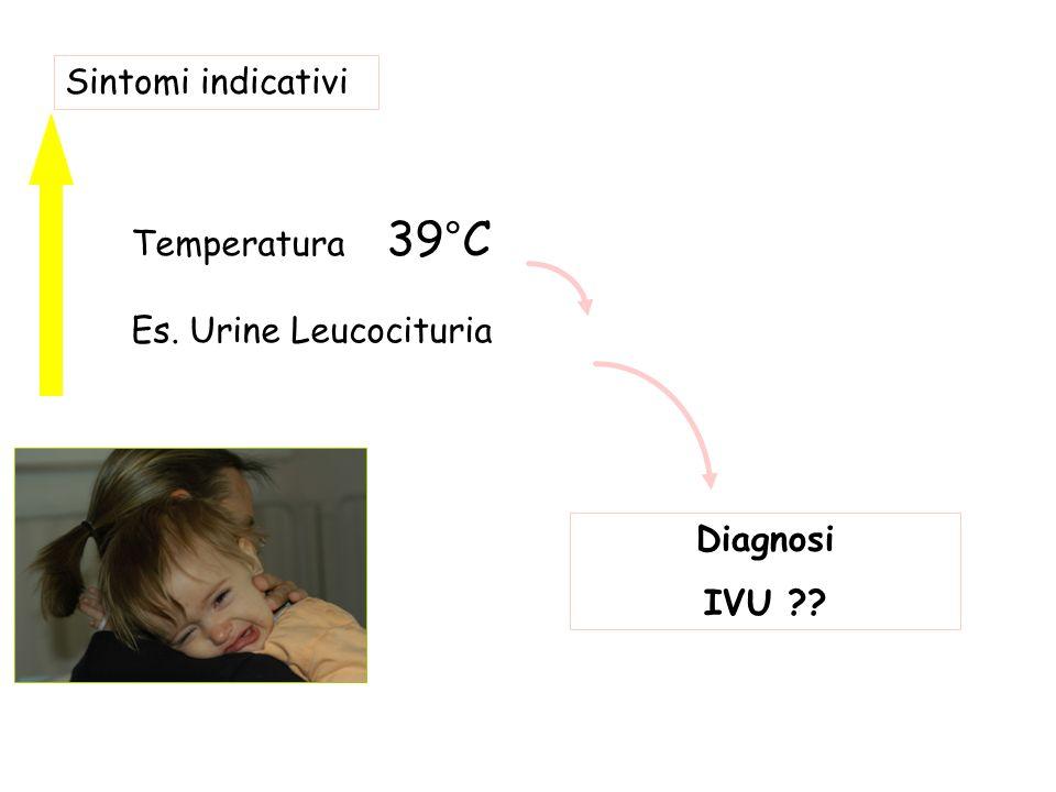 Sintomi indicativi Temperatura 39°C Es. Urine Leucocituria Diagnosi IVU