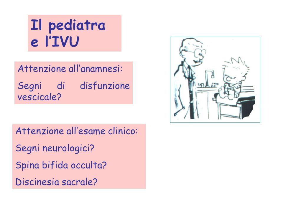 Il pediatra e l'IVU Attenzione all'anamnesi:
