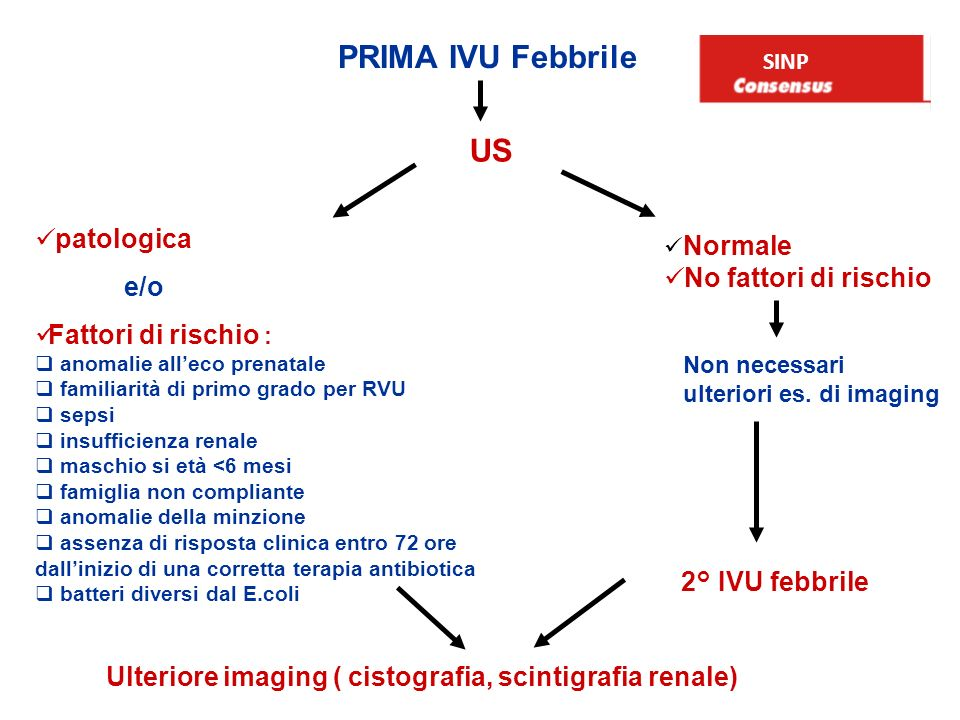 PRIMA IVU Febbrile US patologica e/o No fattori di rischio