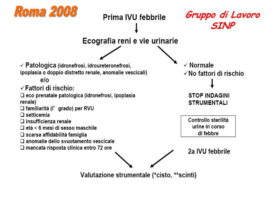 Roma 2008 Gruppo di Lavoro SINP