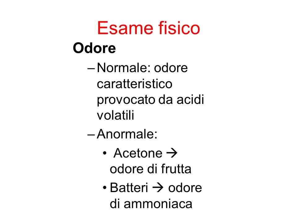 Esame fisico Odore. Normale: odore caratteristico provocato da acidi volatili. Anormale: Acetone  odore di frutta.