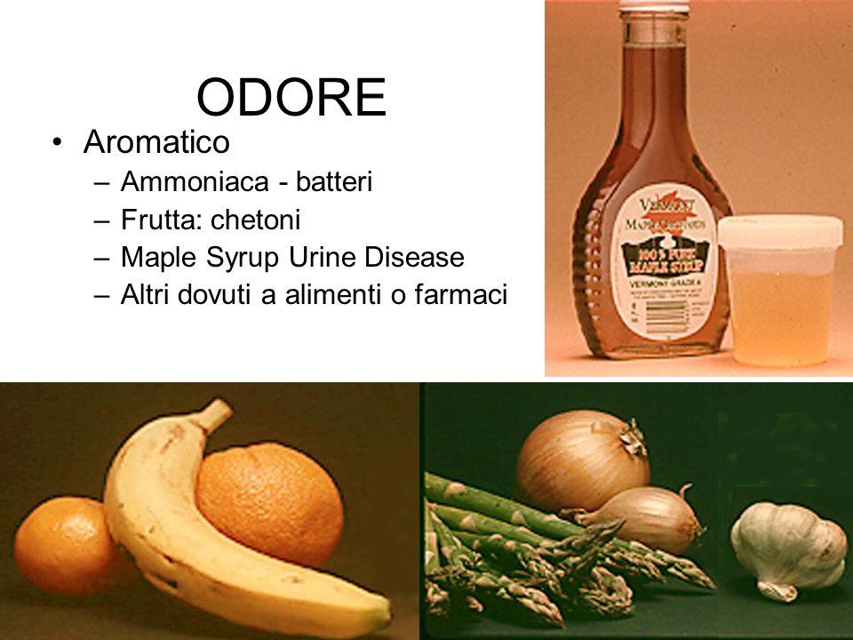 ODORE Aromatico Ammoniaca - batteri Frutta: chetoni