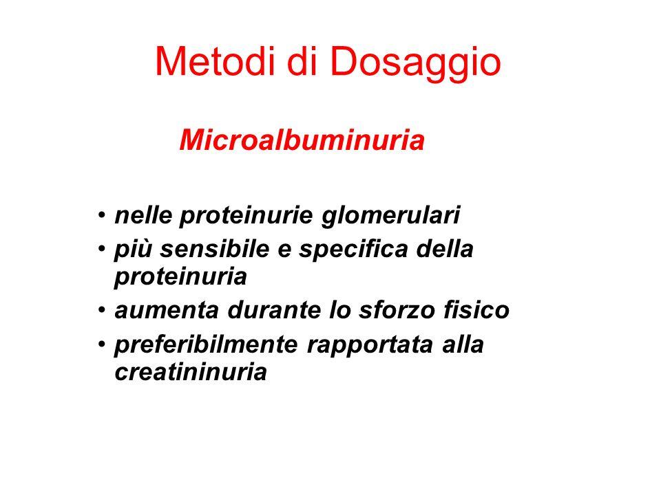 Metodi di Dosaggio Microalbuminuria nelle proteinurie glomerulari