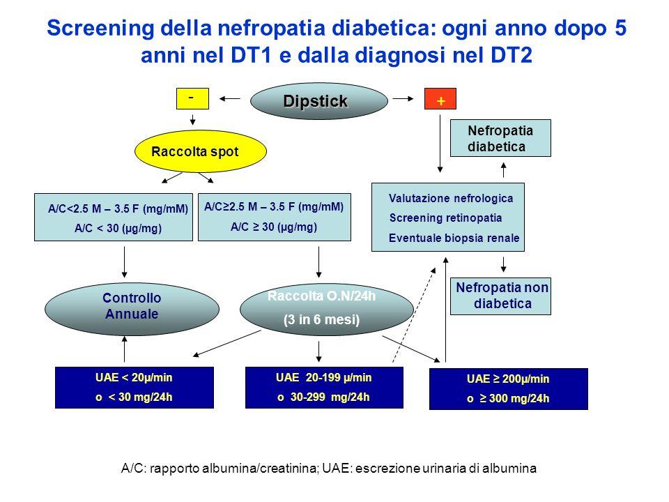 Nefropatia non diabetica