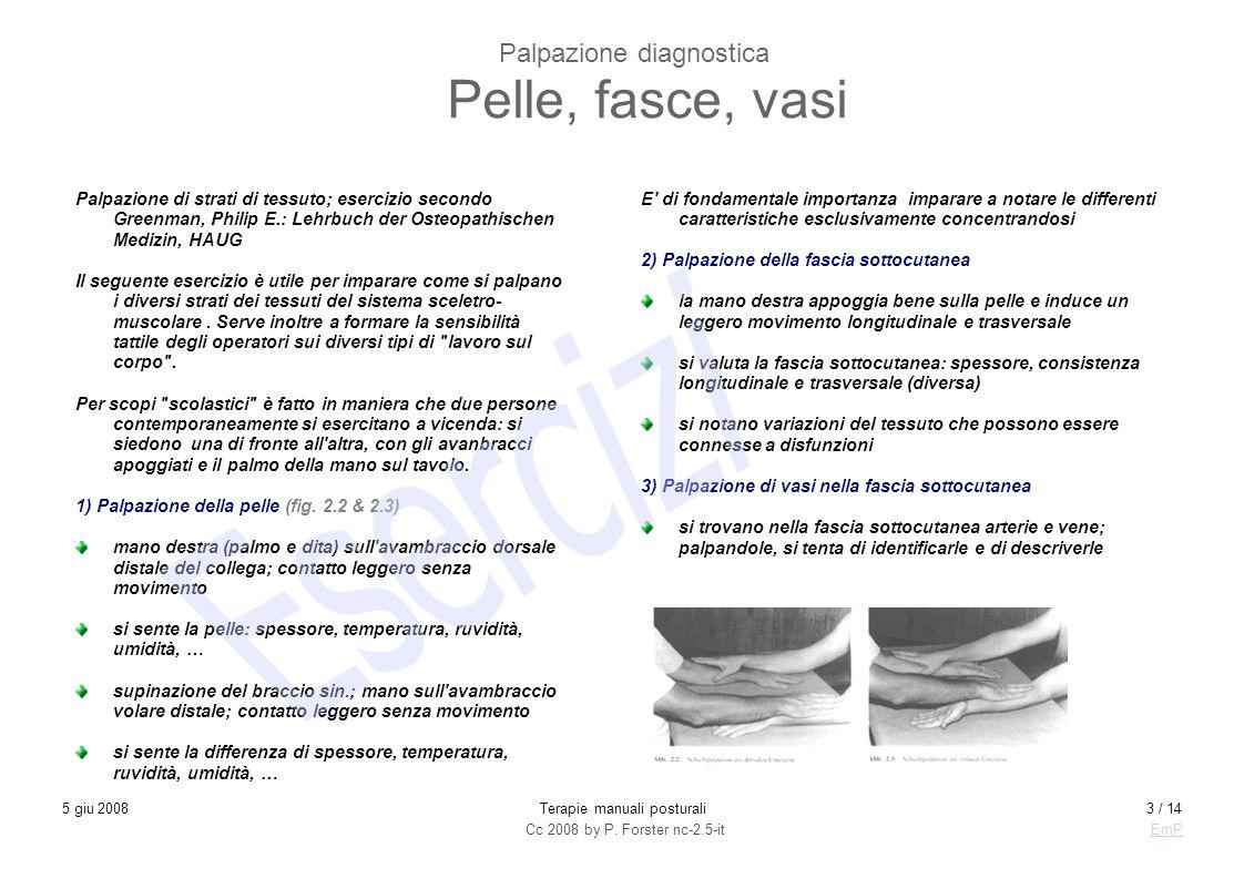 Palpazione diagnostica Pelle, fasce, vasi