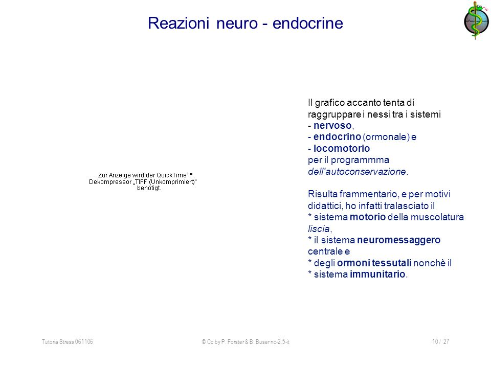 Reazioni neuro - endocrine