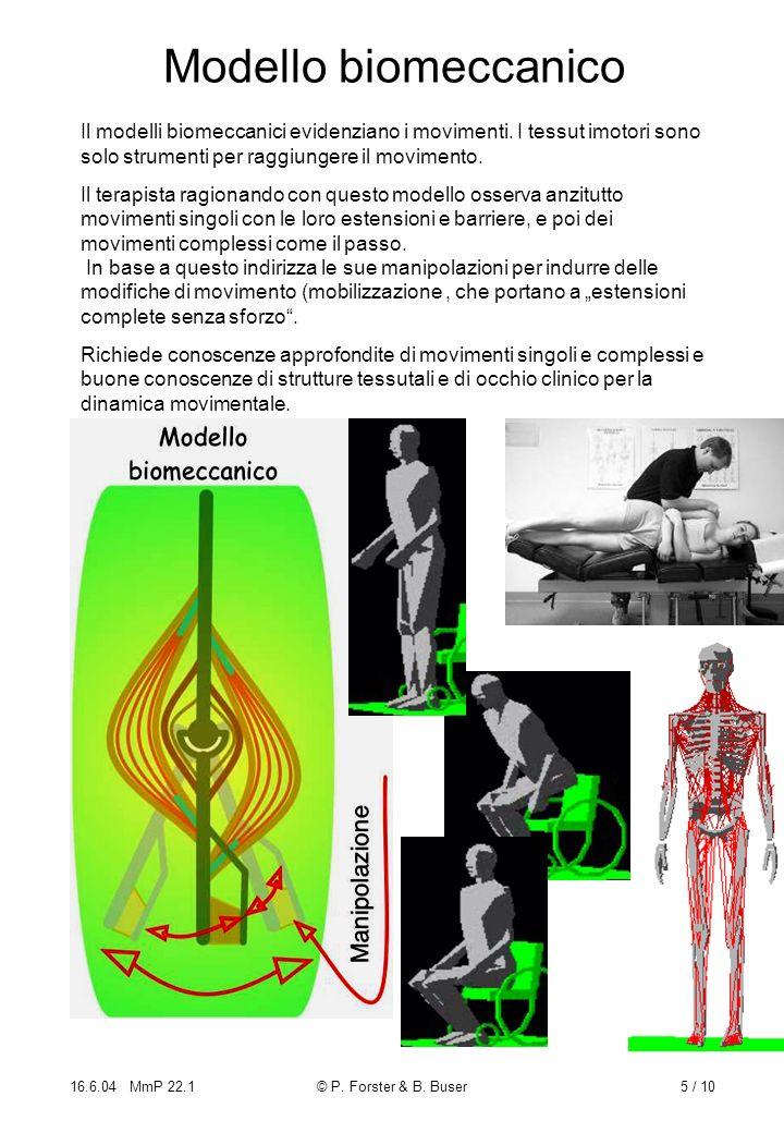 Modello biomeccanico Il modelli biomeccanici evidenziano i movimenti. I tessut imotori sono solo strumenti per raggiungere il movimento.