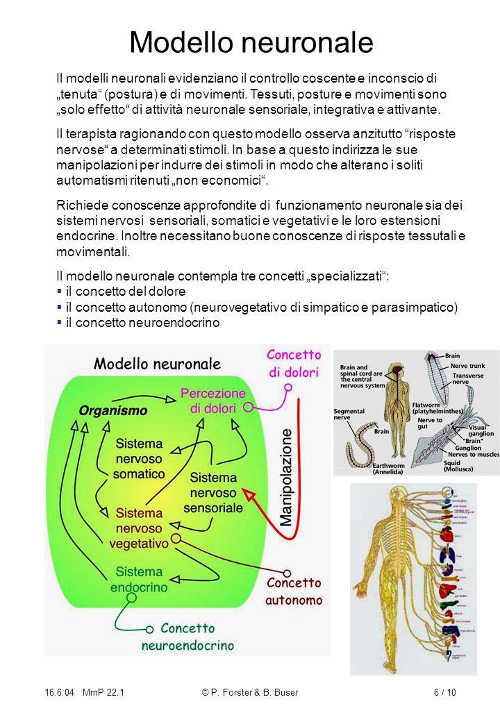 Modello neuronale