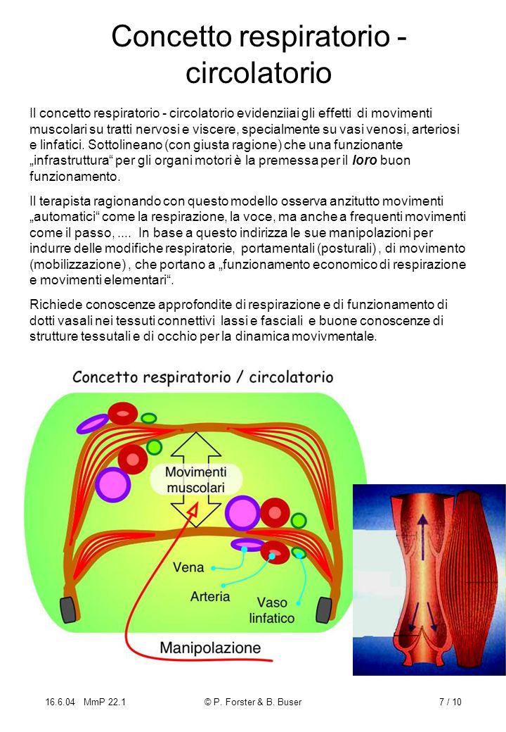 Concetto respiratorio - circolatorio