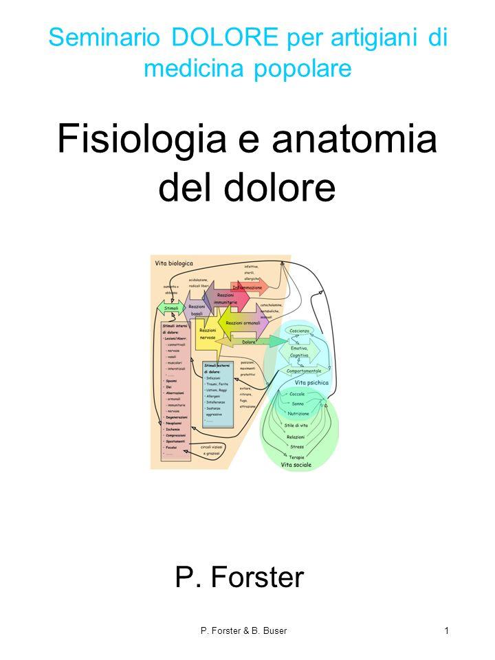 Seminario DOLORE per artigiani di medicina popolare Fisiologia e anatomia del dolore