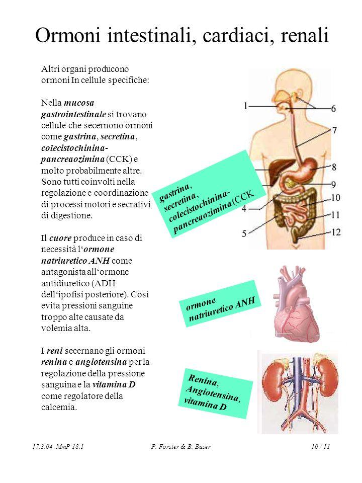 Ormoni intestinali, cardiaci, renali