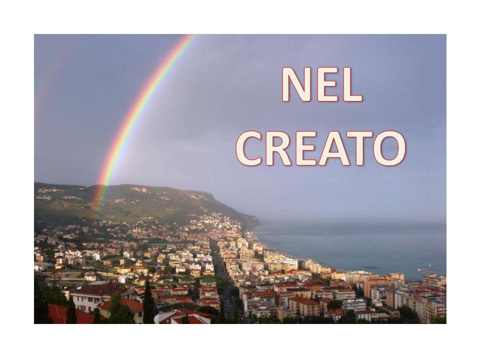 NEL CREATO