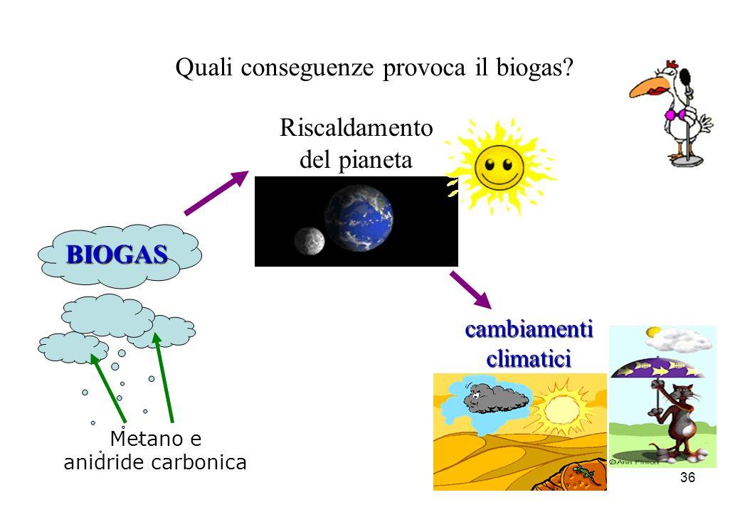 Quali conseguenze provoca il biogas