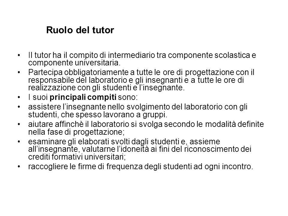 Ruolo del tutor Il tutor ha il compito di intermediario tra componente scolastica e componente universitaria.