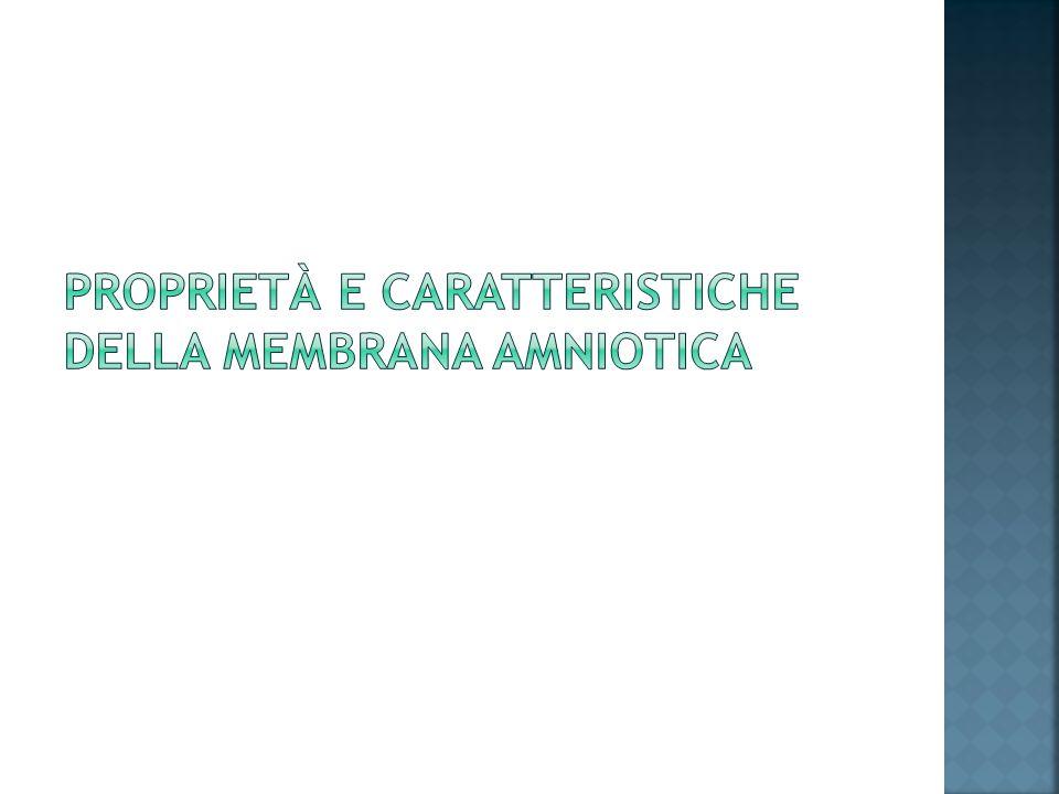 Proprietà e caratteristiche della membrana amniotica
