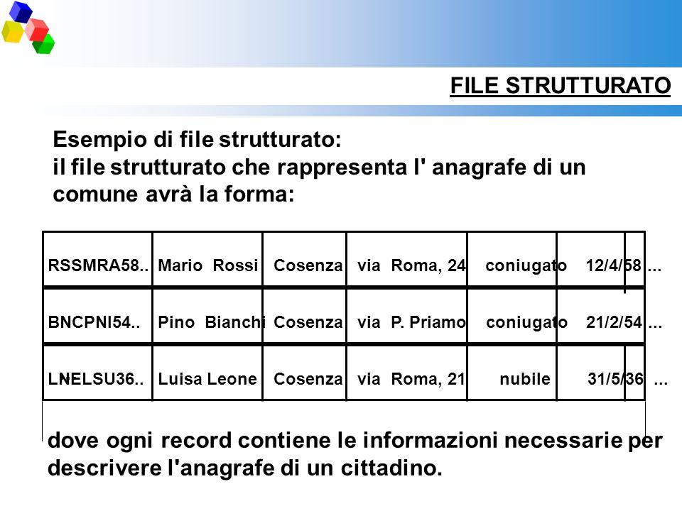 Esempio di file strutturato: