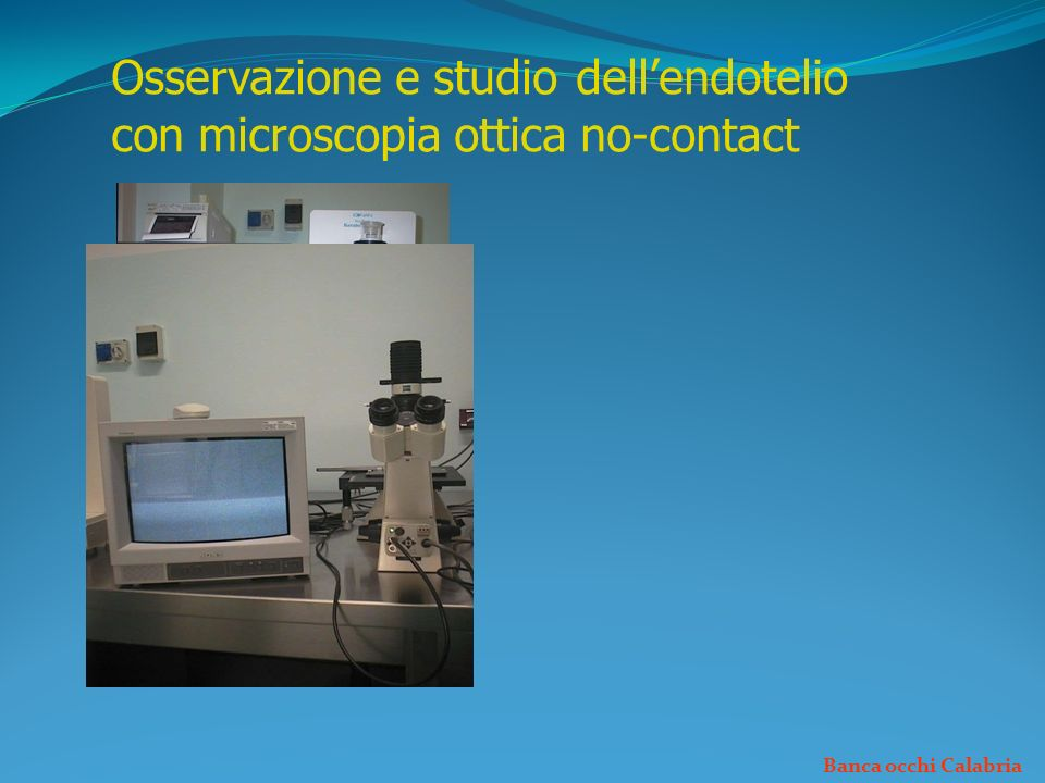 Osservazione e studio dell'endotelio con microscopia ottica no-contact
