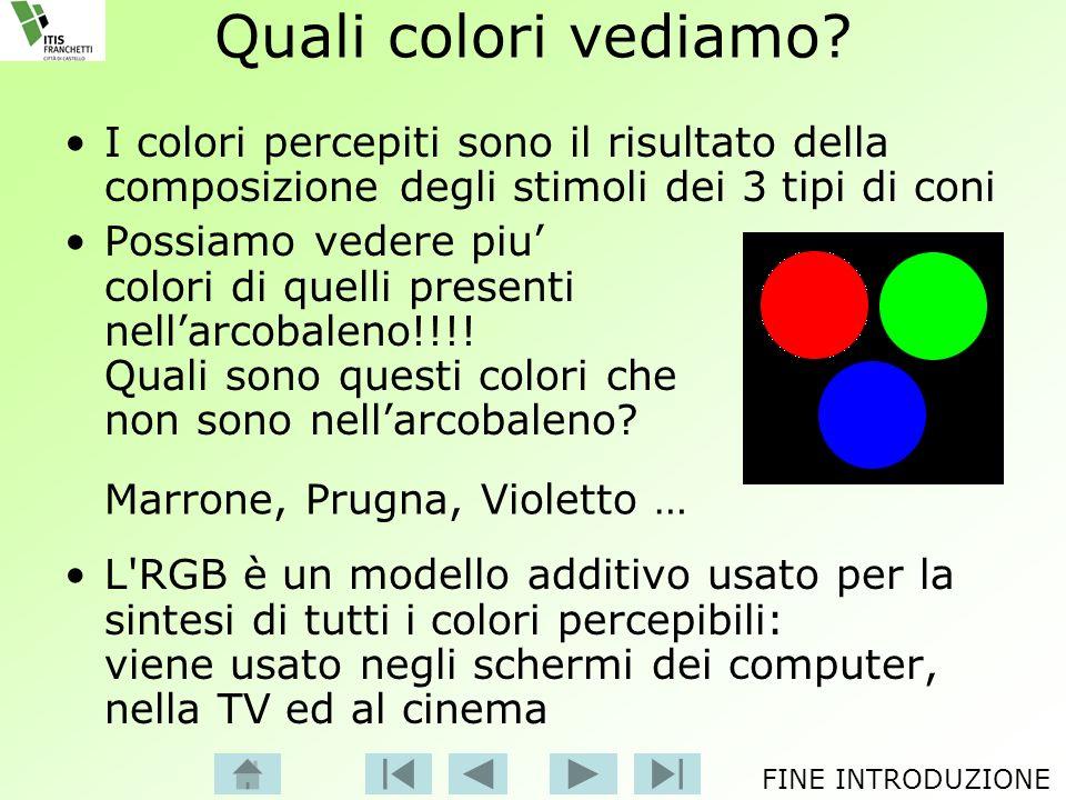 Quali colori vediamo I colori percepiti sono il risultato della composizione degli stimoli dei 3 tipi di coni.