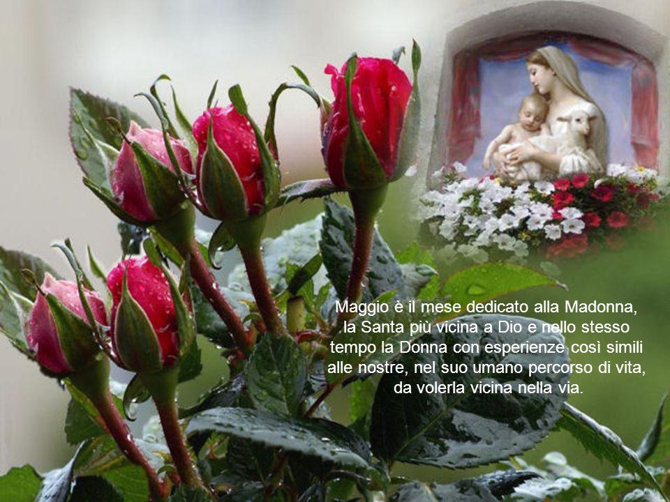 Maggio è il mese dedicato alla Madonna,