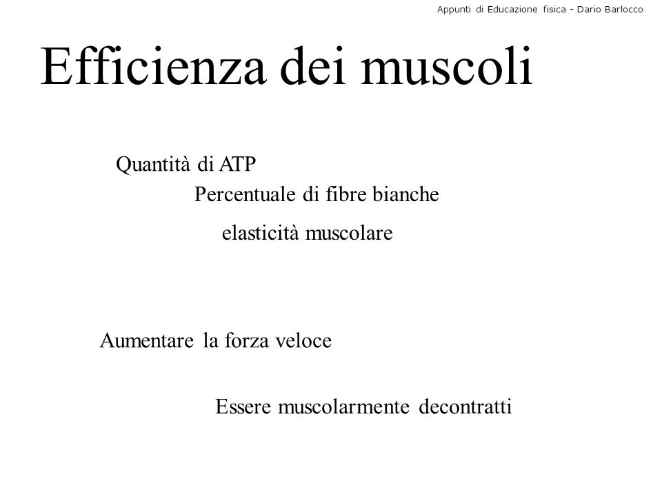 Efficienza dei muscoli