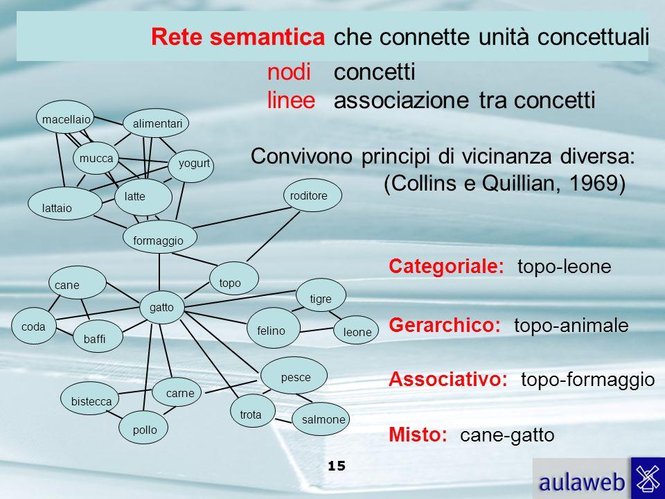 Rete semantica che connette unità concettuali nodi concetti