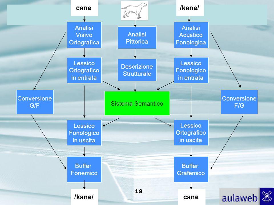 cane /kane/ /kane/ cane Analisi Visivo Ortografica Analisi Acustico