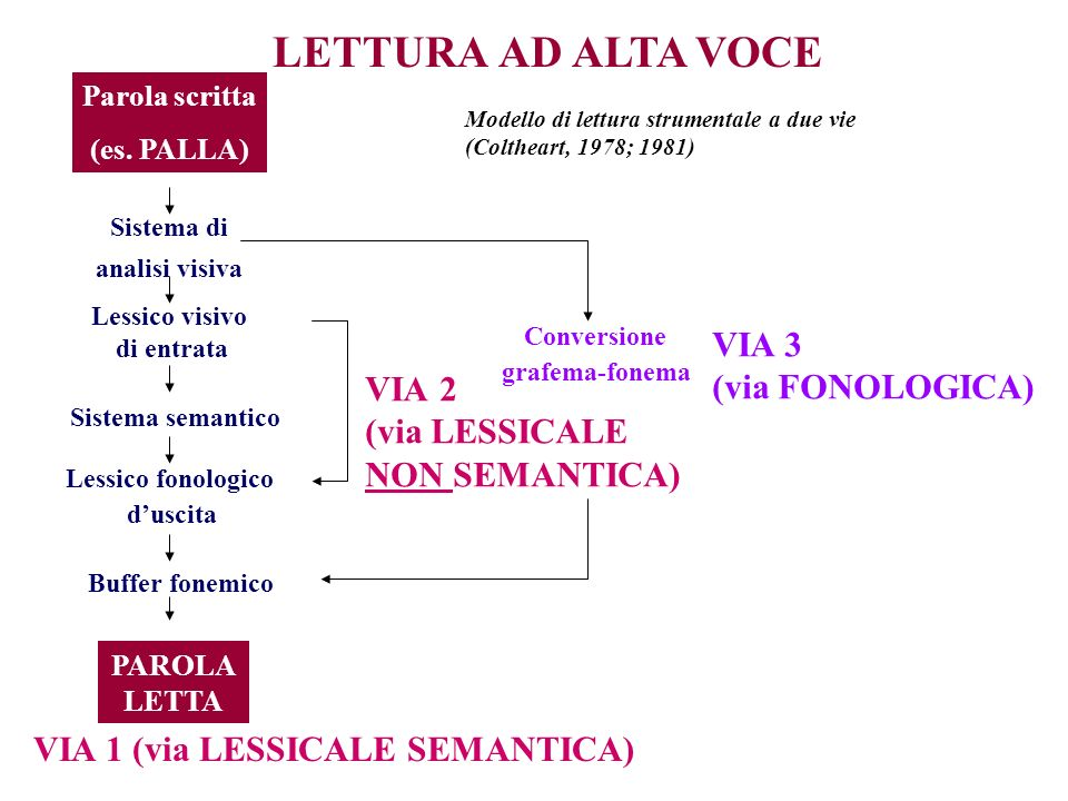 Sistema di analisi visiva VIA 1 (via LESSICALE SEMANTICA)