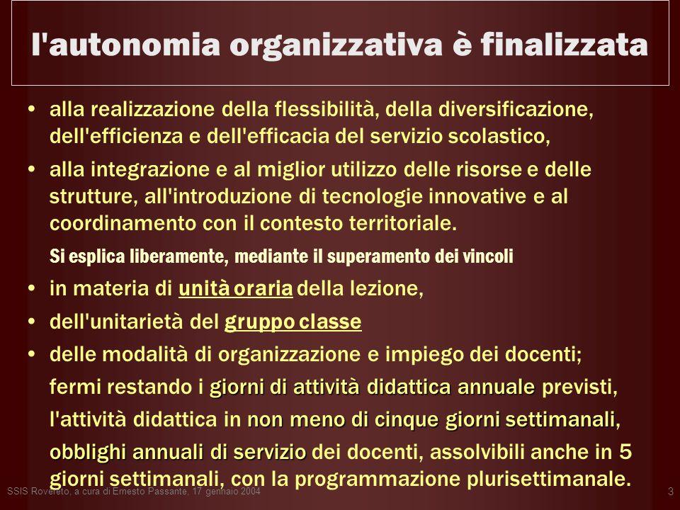 l autonomia organizzativa è finalizzata